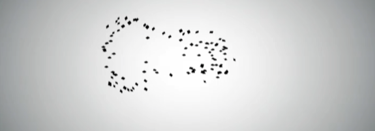 Still from flocking algorithm animation